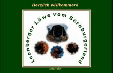 Leonbergers vom Bernburgerland